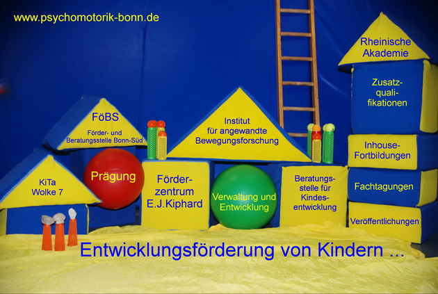 Organigramm des Förderverein Psychomotorik e.V. Bonn